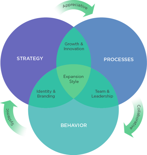 Expansion Style Analysis - Organization Design - LC GLOBAL Consulting Inc. New York, NY - Munich, Germany