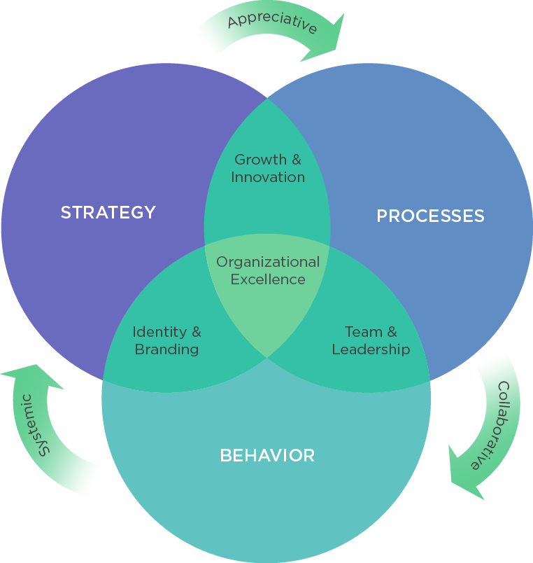 Organizational Excellence